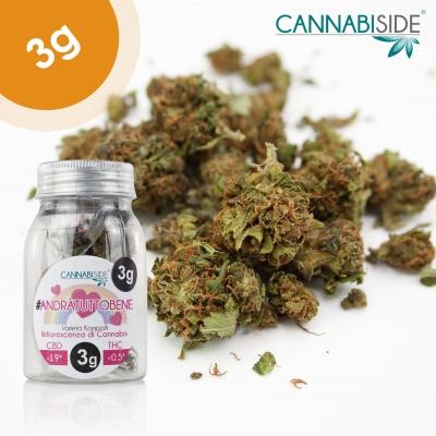 #andràtuttobene Infiorescenza di Cannabis Legale 3g erba legale al cbd; I Fiori di Cannabis Light Legale