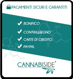Pagamenti Sicuri con Cannabiside