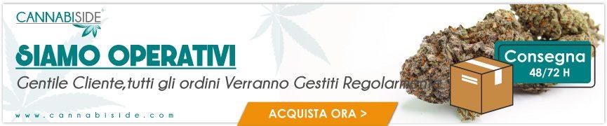 Tutti gli ordini Cannabiside verranno gestiti Regolarmente