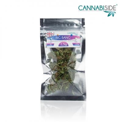 Big Bang Infiorescenza di Cannabis Legale Economy 1,5 g