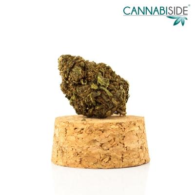 Big Bang Infiorescenza Top Senza Semi di Cannabis Legale 1g