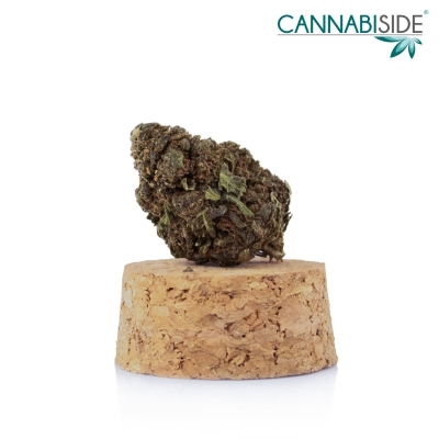 Big Bang Infiorescenza Top Senza Semi di Cannabis Legale 1g