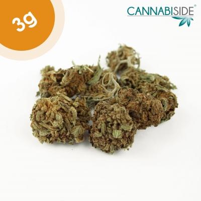 Big Bang Infiorescenza Top Senza Semi di Cannabis Legale 3g