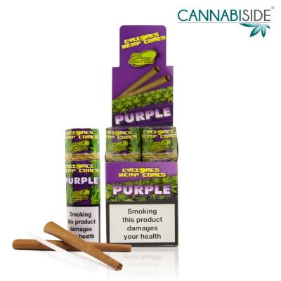 Box Hemp Cone Purple Conf. 12 pz