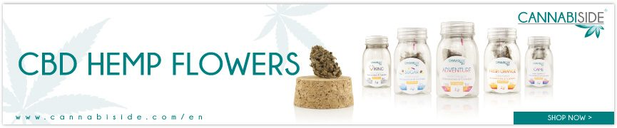 CBD Hemp Cannabis Flowers