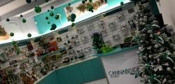 Fotografia Franchising Cannabis Affiliazione