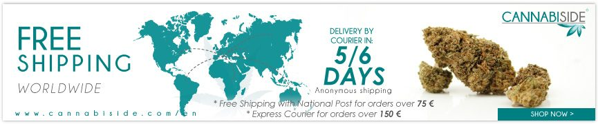 Free Cannabiside Shipping in worldwide for Orders Over 100€