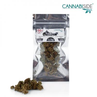Harley Infiorescenza di Cannabis Legale Economy 1,5 g