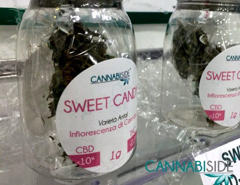 Infiorescenza di Cannabis Esposta su uno Scaffale nel Negozio CannabiSide