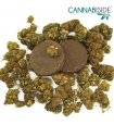 Infiorescenze Cannabis CBD