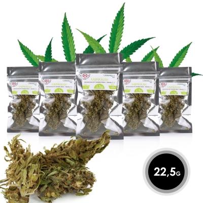 Karma Kush - Infiorescenza Cannabis Sativa L. Outdoor 22,5g