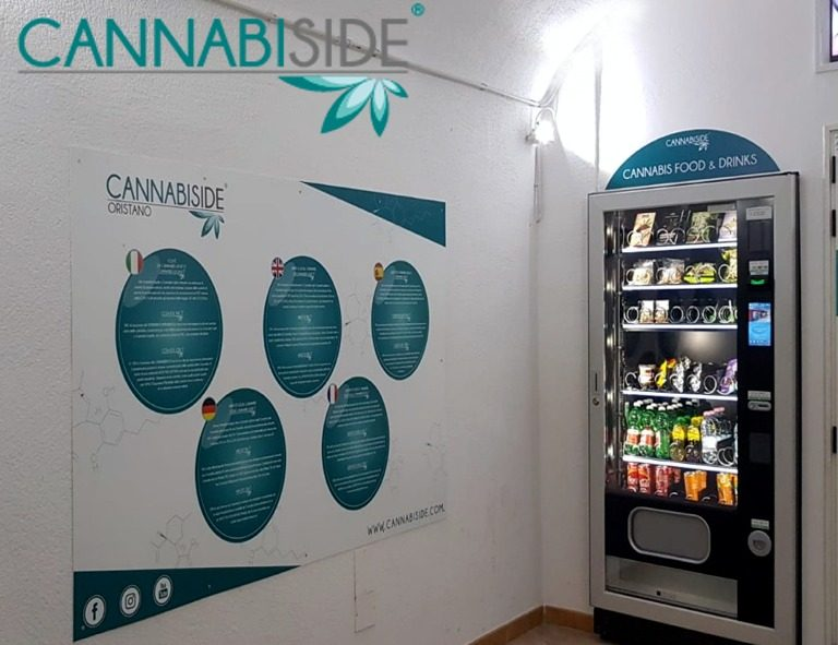 Multi Language Design Graphic with detail and explained of the Cannabis Sativa Cbd Products