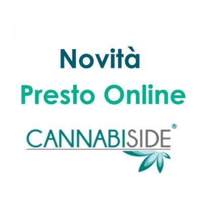 novit_presto_Online