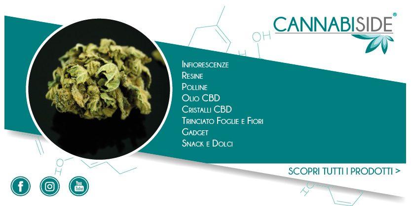 Presentazione Prodotti Linea Cannabis Cannabiside