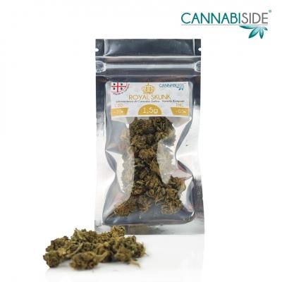 Royal Skunk Infiorescenza di Cannabis Legale Economy 1,5 g