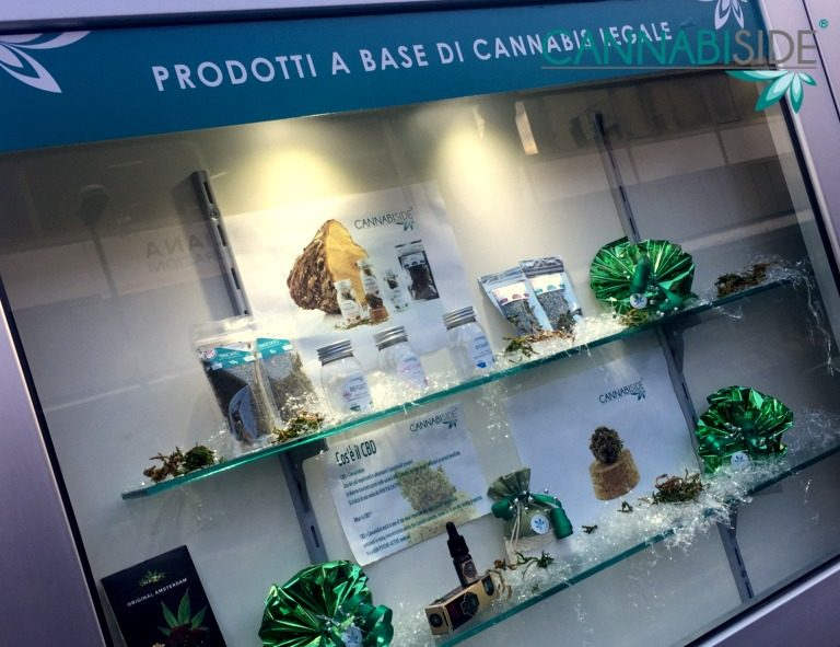 Shop Window in the Cannabis Shop Franchising Project Cannabiside