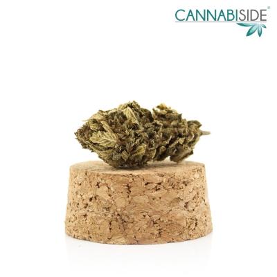 Sprint_Infiorescenza_di_Cannabis_Legale_1_g
