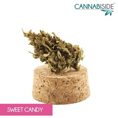 Sweet Candy Infiorescenza di Cannabis Legale 1 g